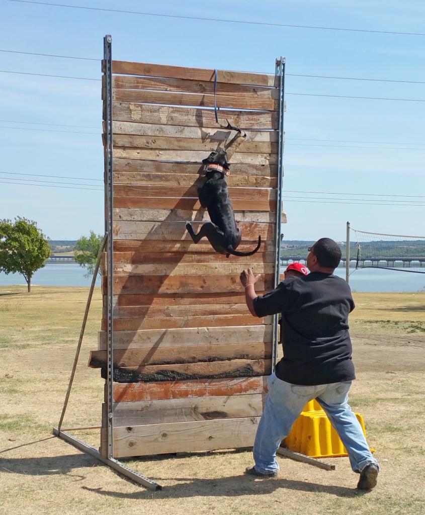 wall-climb